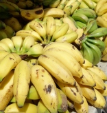 Tables full of bananas