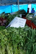Herbs and all green vegetables are cheap