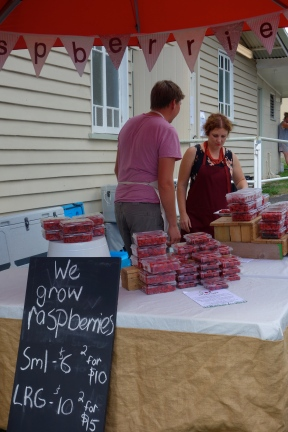 Beautiful quality raspberries