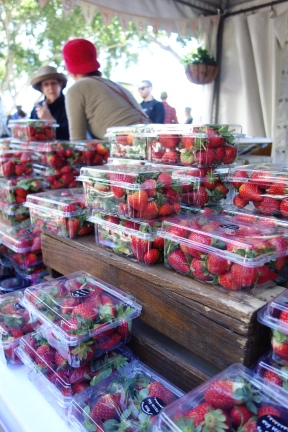 Sensational strawberries.
